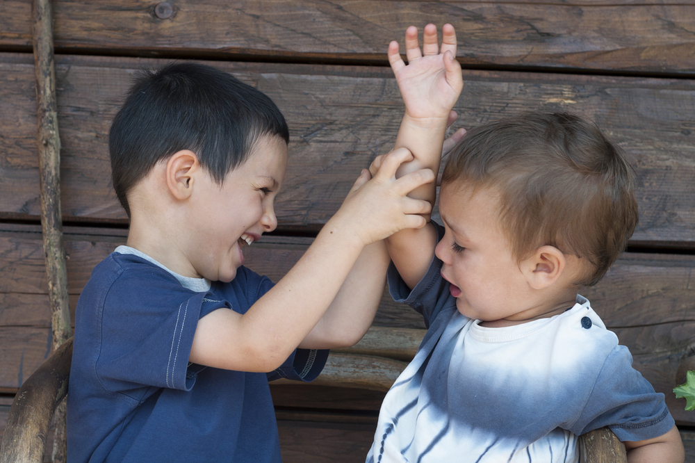 THE ART OF MINIMIZING SIBLING RIVALRY