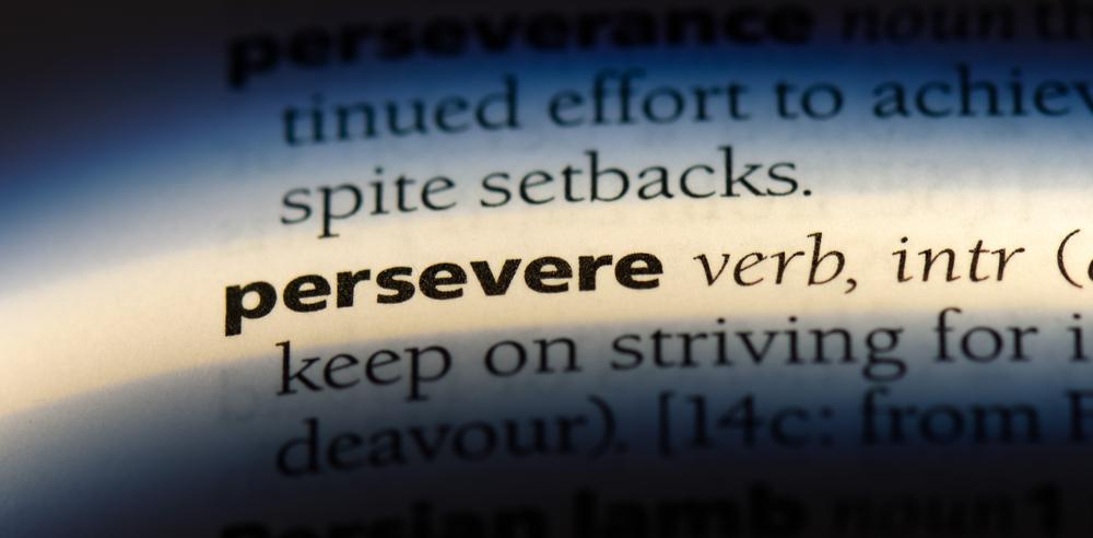 shady-oak-persevere